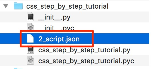 The Script Json File